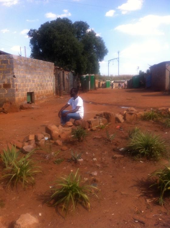 Bafana's garden II
